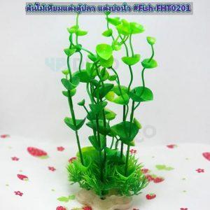 FHT0201 ต้นไม้แต่งตู้ปลา ต้นใบสูงสีเขียว